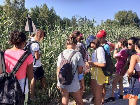 Citizen Science - Lab STEAM organizzato da ISCOM ER Rimini