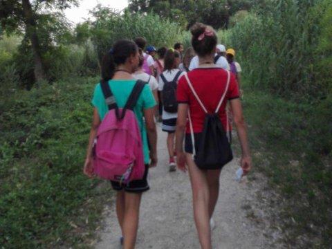 Laboratorio STEAM: professione natura - La guida ambientale escursionistica